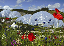 Visit Eden on your Cornwall Short Breaks