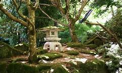 Japanese Gardens St Mawgan