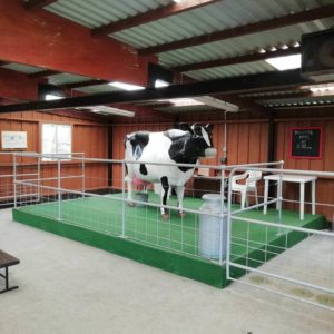 Clarabelle the cow, DairyLand, Newquay