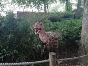 Dinosaur Paradise Park