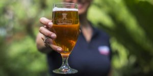 Beer Festival at the Eden Project, Cornwall