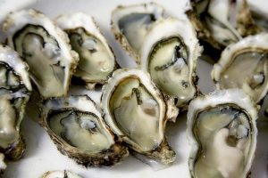 Falmouth Oyster Festival, this October in Cornwall