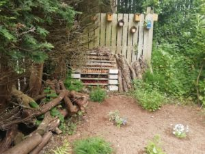 Bug Hotel located near the ladies Oak toilet block