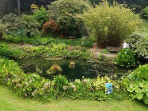 Miracle theatre at Trebah gardens this June