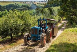 Tractor ride at Healeys Cyder Farm, Cornwall