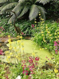 Trebah Gardens, near Falmouth in Cornwall